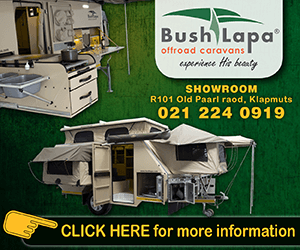 Bush Lapa – Boland – Rectangle – Regional rectangle 3